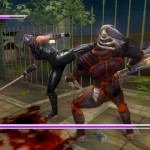 Ninja Gaiden Sigma Plus PS Vita 06