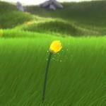 Flower PS Vita 02